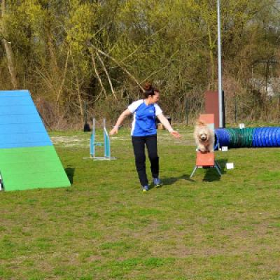 Agility-Training am 02.04.2017